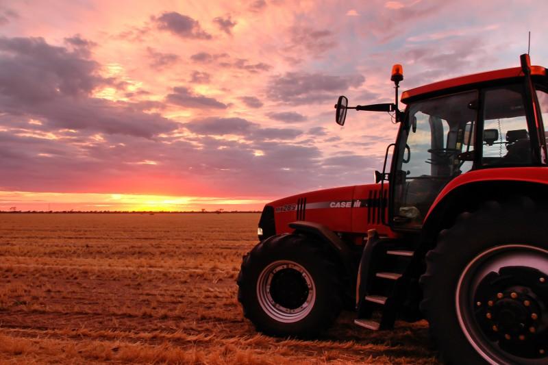 Janlin Sunrise Baling Harvest