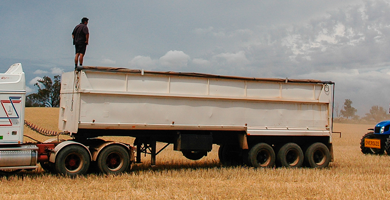 Janlin Harvest Transport Truck Grain